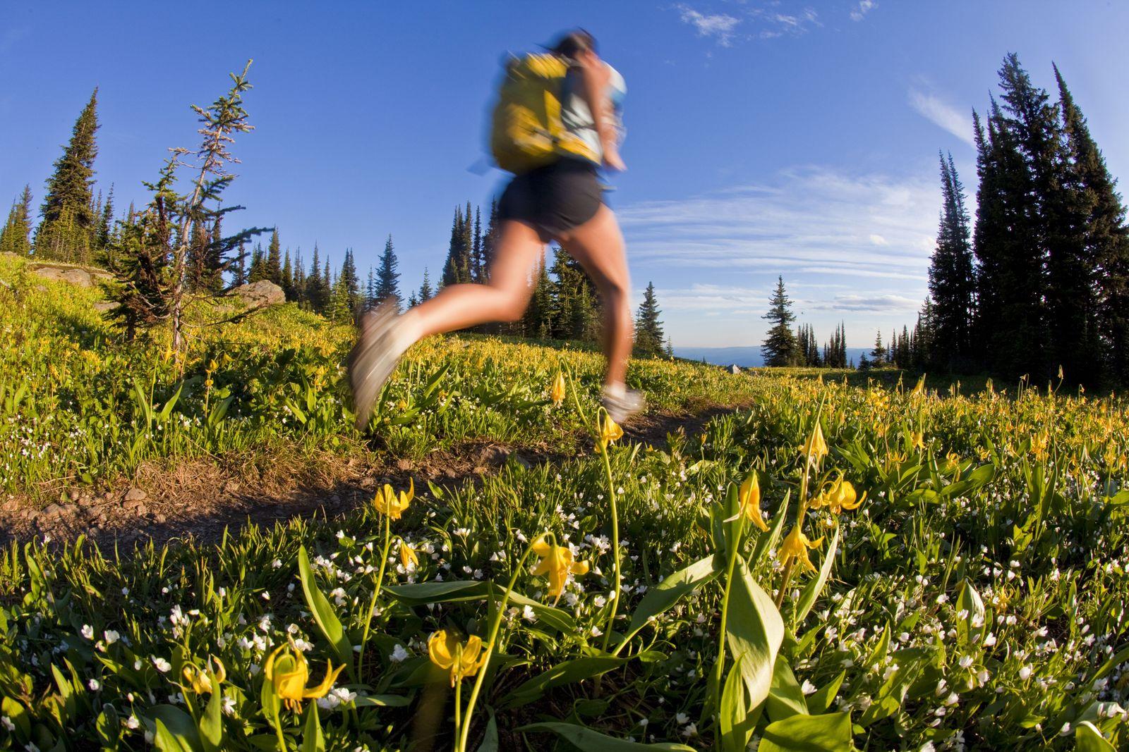 NICHT MEHR VERWENDEN! - Trailrunning / Laufen