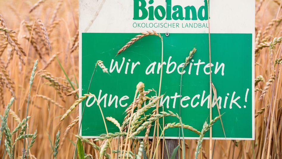 Bioland - Dinkelfeld