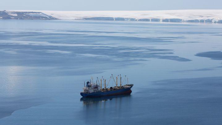 Antarktis: Eisige Schönheit