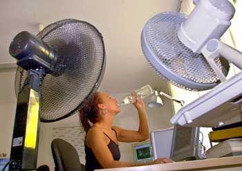 Die Anschaffung eines Ventilators hat sich in diesem Jahr gelohnt