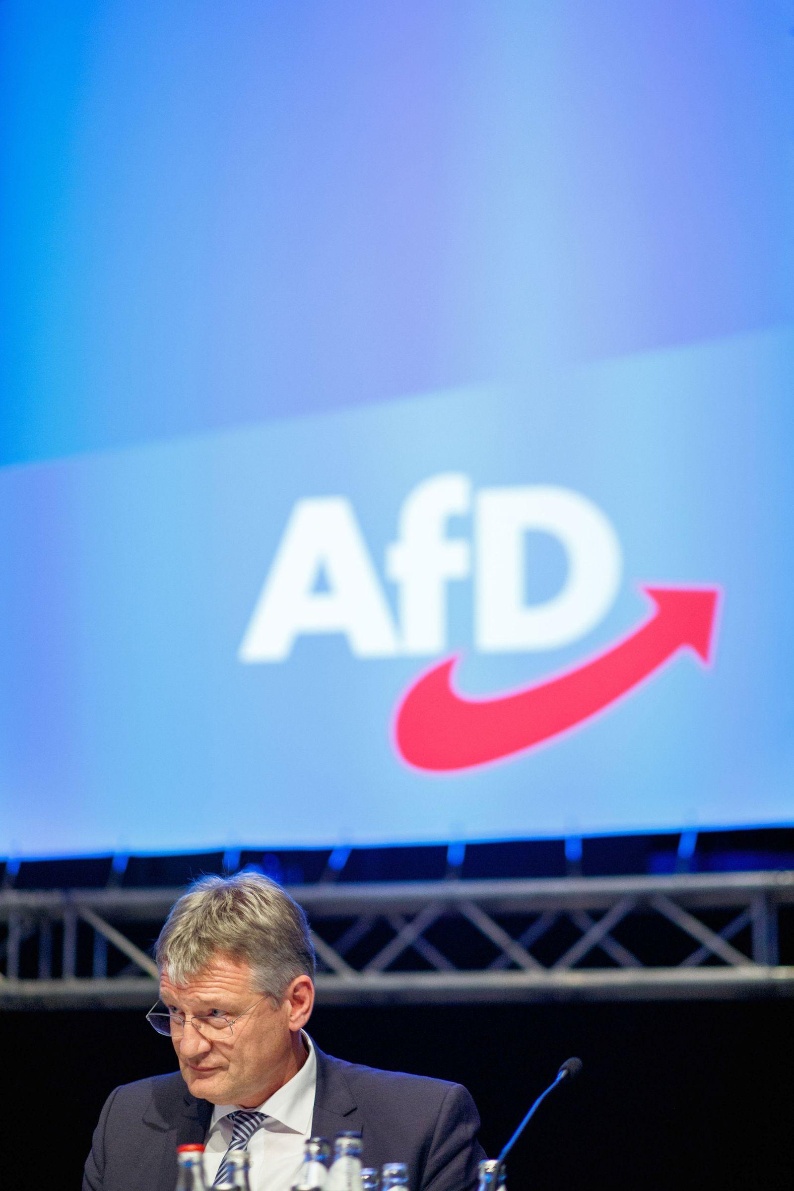 AfD Parteitag Meuthen