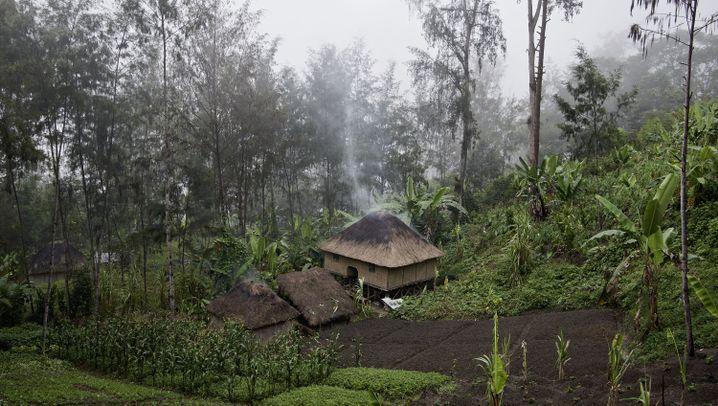 Hexenverfolgung in Papua-Neuguinea: Eines der gefährlichsten Länder für Frauen