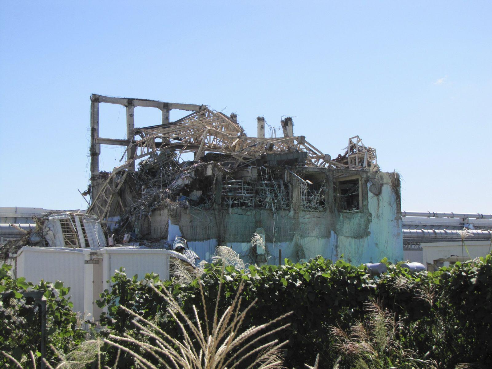 Fukushima / Reaktor / Tepco