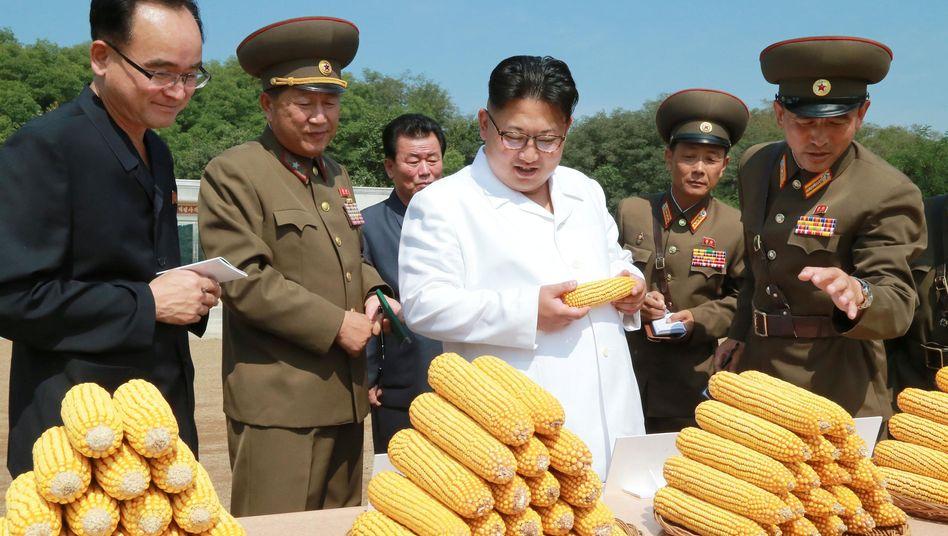Kim Yong Un beim Besuch einer Farm