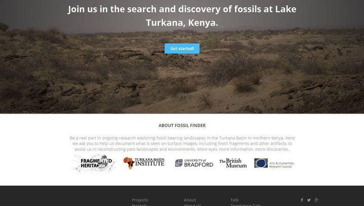 """Crowd-Forschung: So funktioniert der """"Fossil Finder"""""""