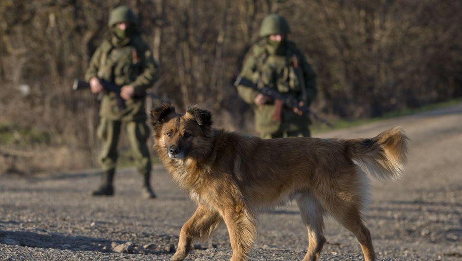 """Russische Soldaten auf der Krim: """"Verantwortung für das Leben unserer Mitbürger in der Ukraine"""""""