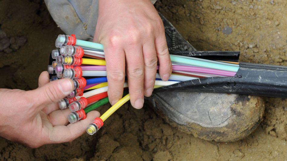 Glasfaser-Kabel (Symbolbild): Staatsschutz ermittelt wegen Vandalismus