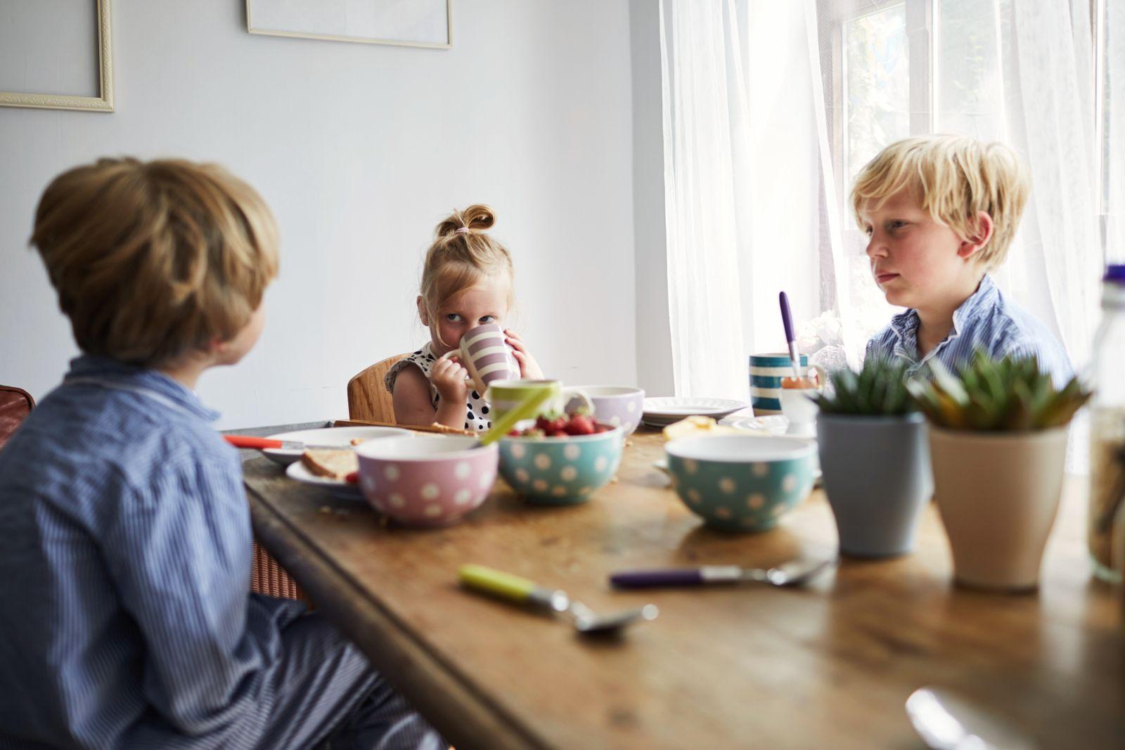 EINMALIGE VERWENDUNG Sandwich-Kinder