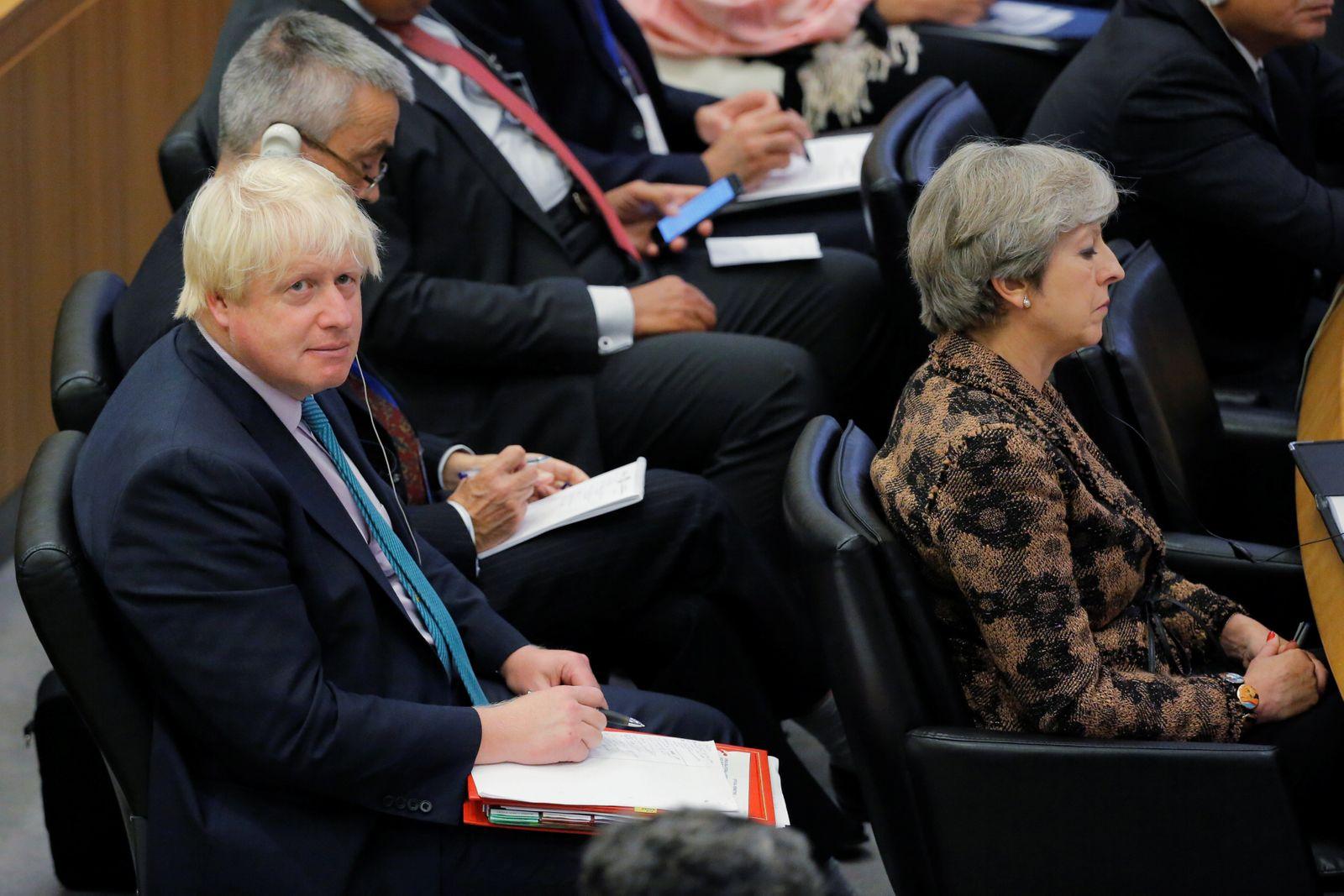 Theresa May / Boris Johnson