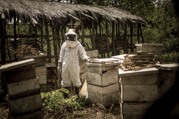 Shaban Lusiga is a beekeeper. The region is famous for its thick, dark honey.