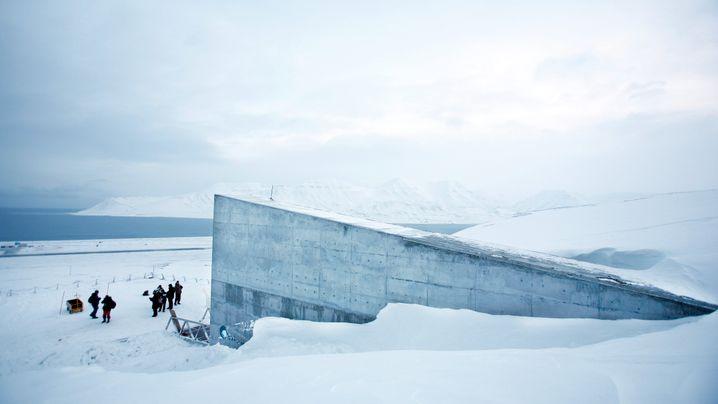 Saatguttresor auf Spitzbergen: Die Arktis kommt ins Schwitzen