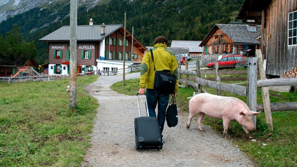 Eiger-Region: Genusswandern in der Schweiz