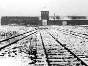 Konzentrationslager Auschwitz: 5000 behinderte Kinder wurden von NS-Ärzten gequält und ermordet