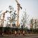China meldet schon wieder hohes Wirtschaftswachstum