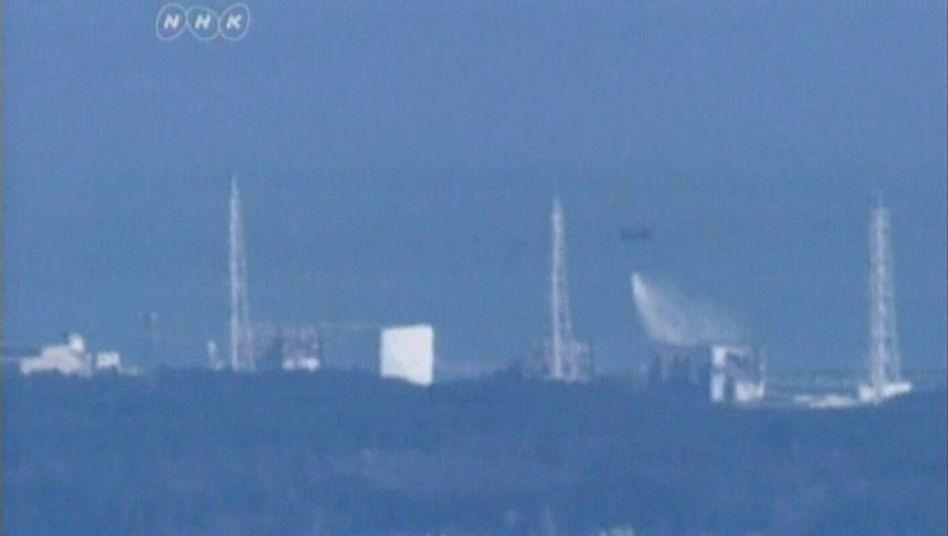 Fukushima: Freiwillige wollen im Unglücks-AKW helfen
