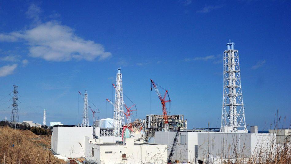 """AKW Fukushima: """"Es war abscheulich. Wir hätten nicht dort sein sollen"""""""