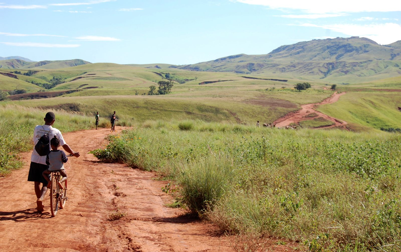 FILE PHOTO: A farmer carries his son on a bicycle as they cross a locust infested area in the Vakinankaratra region of central Madagascar