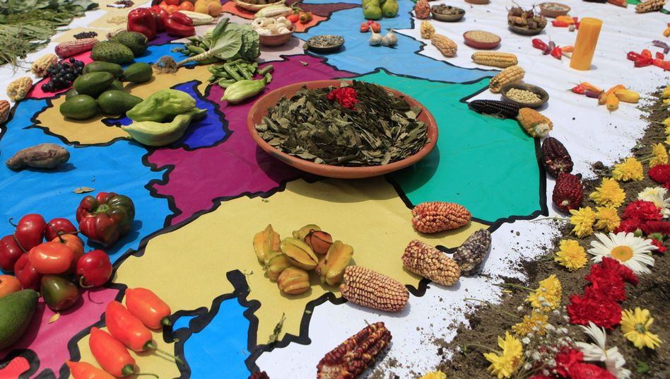 A map of Peru covered with produce as part of an indigenous ritual demanding measures to protect the climate.