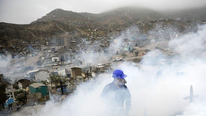 Seuchenalarm: Im Einsatz gegen das Zika-Virus