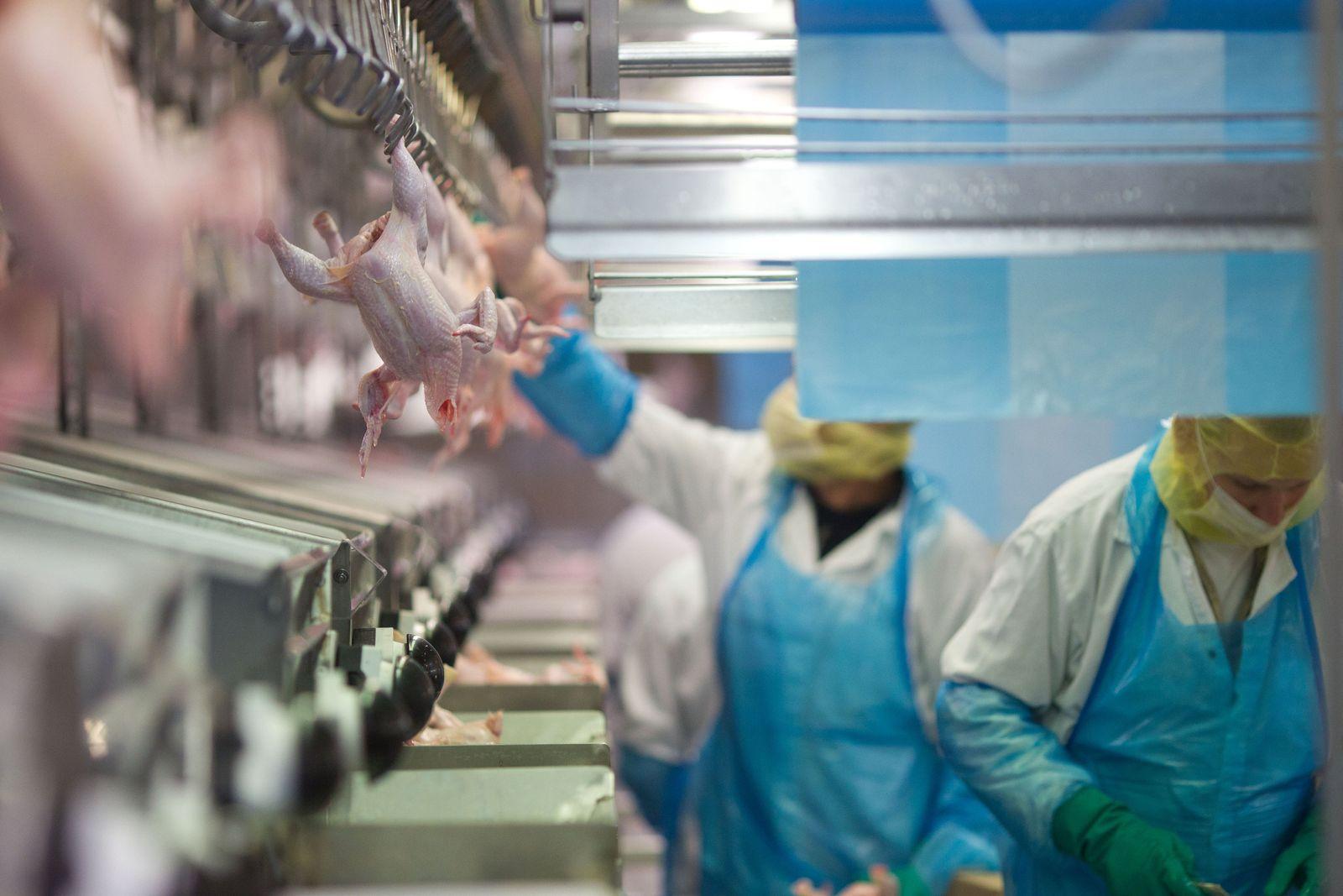 Verbraucher schätzen Lebensmittelrisiken oft falsch ein