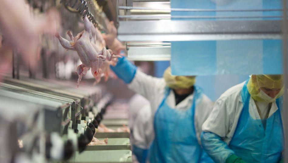 Geflügelschlachterei: Chlorhühnchen gruseln deutsche Verbraucher, doch Behörden sehen keine Gesundheitsbedenken