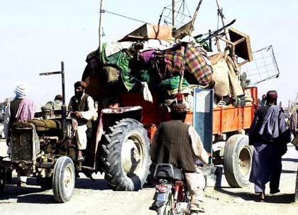 Brachten Traktoren Saddams Schätze außer Landes?