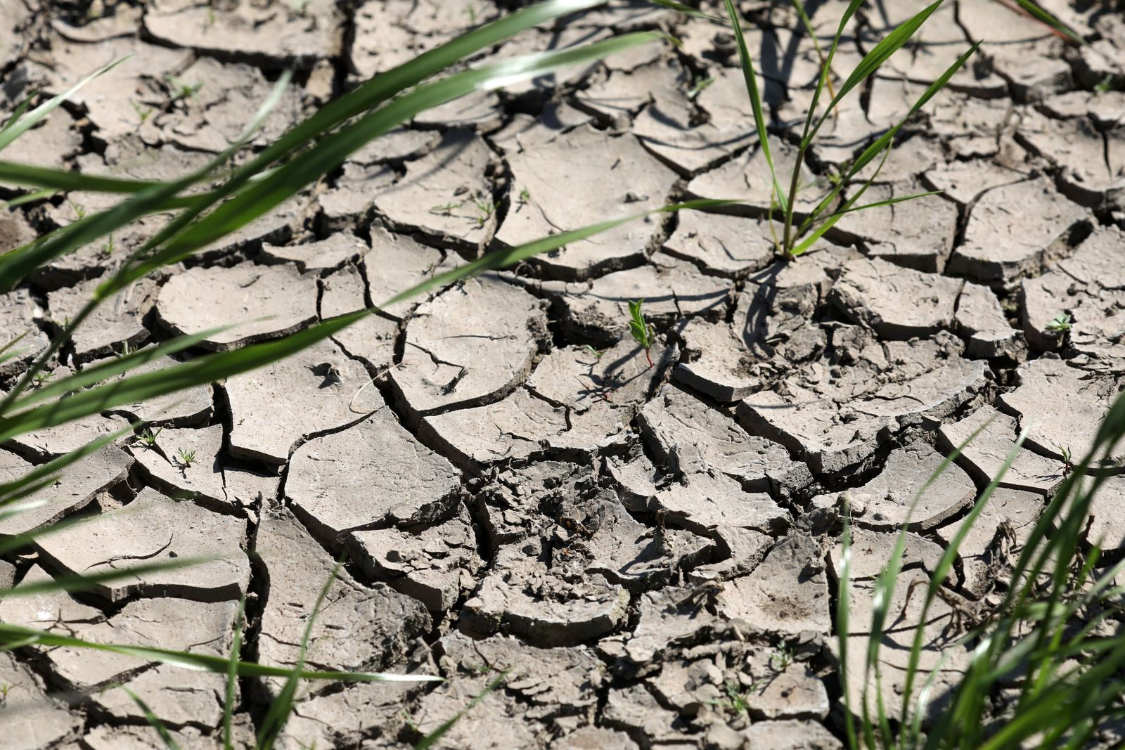 Dürre-Folgen für Grundwasser und Böden