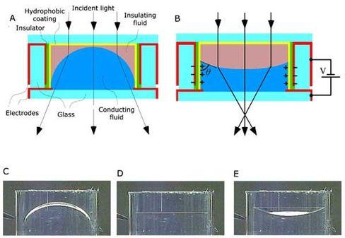 Konkav oder Konvex: Ein elektrisches Feld verbiegt die Flüssiglinse binnen zehn Millisekunden