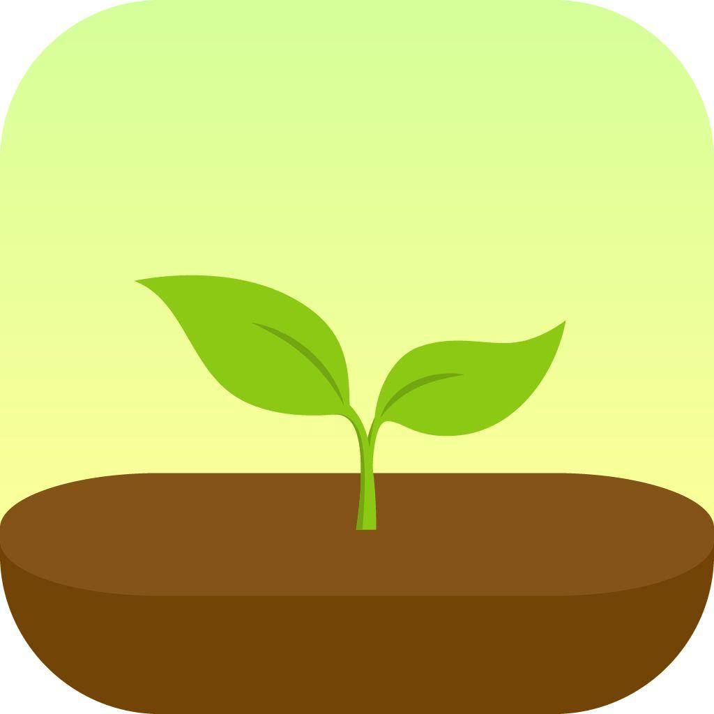 EINMALIGE VERWENDUNG Forest/ App