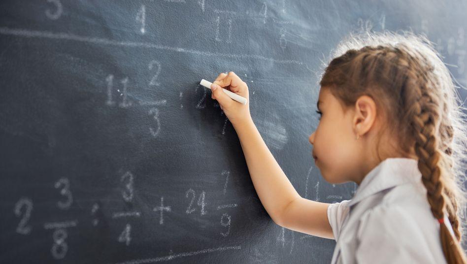 """Mädchen und Mathe: """"Notfalls wäre wieder an die Einrichtung von Mädchenschulen zu denken"""""""