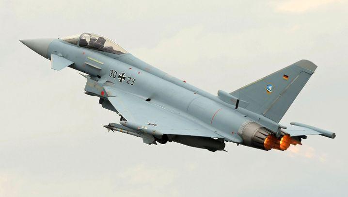 """Nato in Osteuropa: Angst vor dem """"Raubtier"""""""