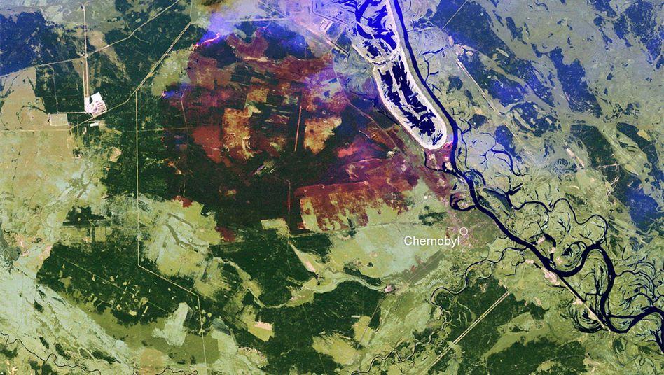 Feuer um Tschernobyl: Radioaktivität bisher im Normalbereich