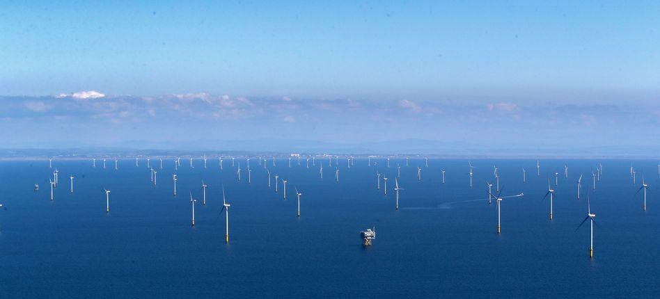 Windräder vor der britischen Küste (Archivbild)