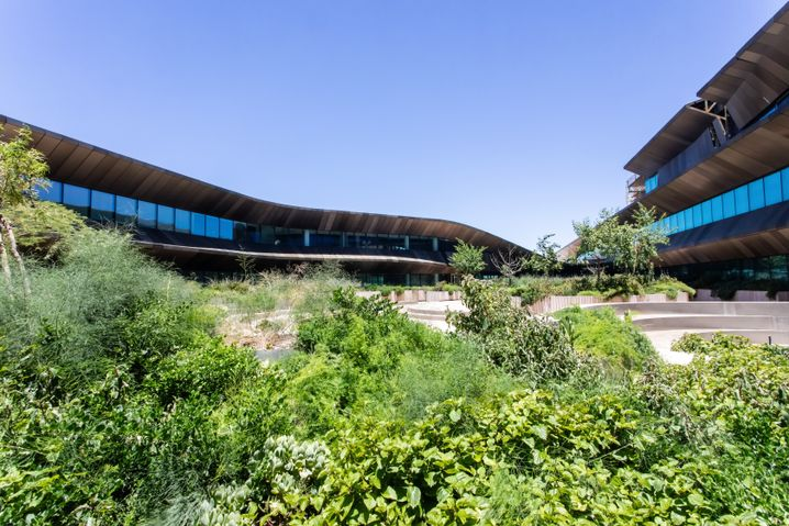 Begrünter Innenhof des Botswana Innovation Hub in Gaborone