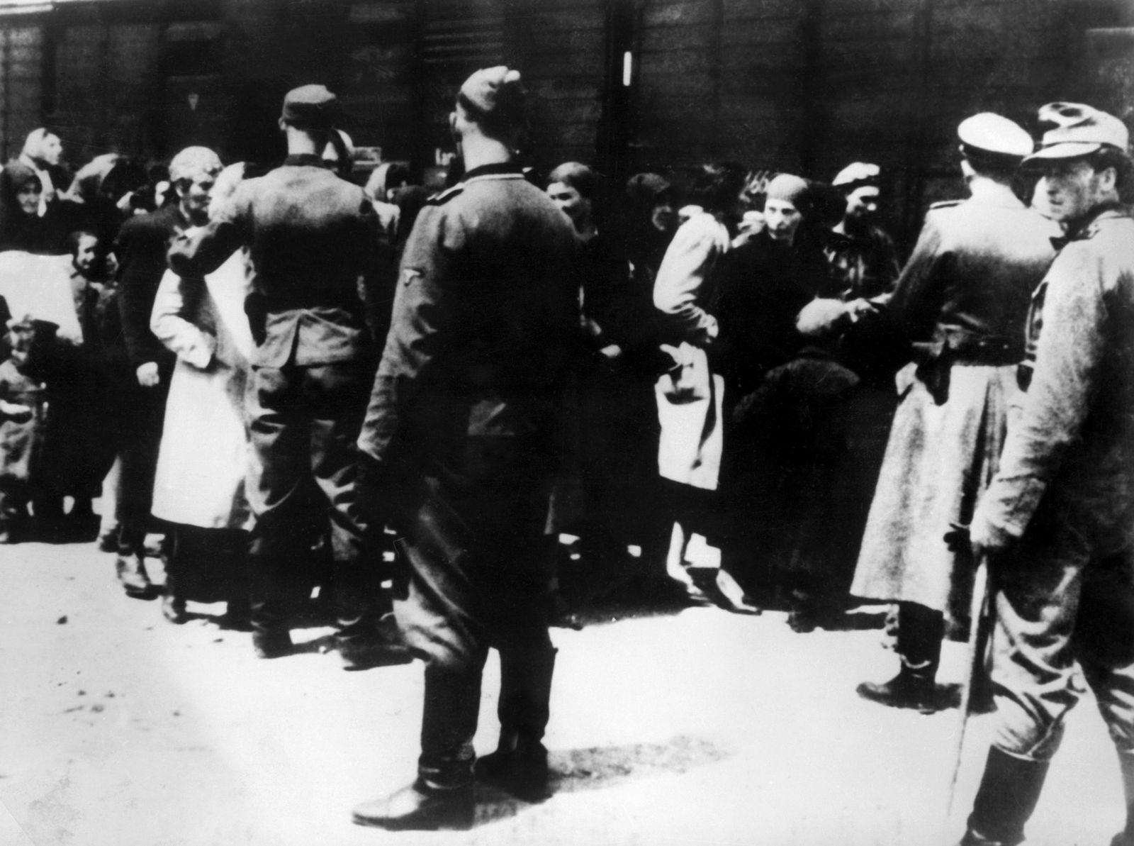 Auschwitz / Wachen