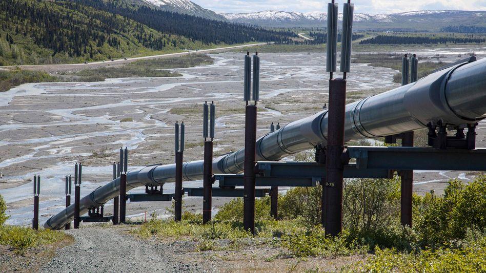 Trans-Alaska-Ölpipeline am Gulkana River in Alaska