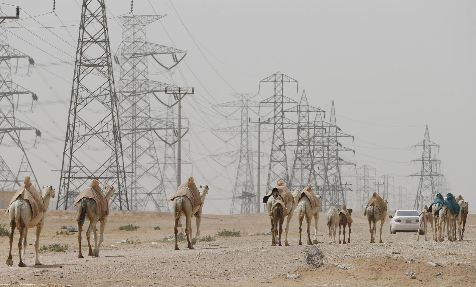 Stromnetz / Saudi-Arabien