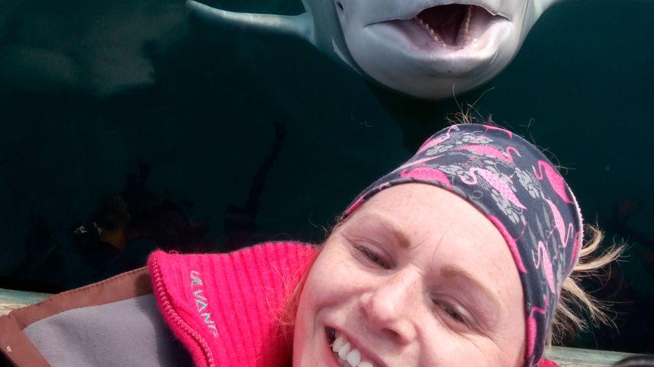 Norwegens berühmtester Beluga wird verdächtigt, für Russland zu arbeiten