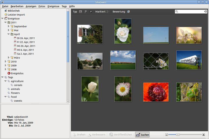 Verlustlose Bildbearbeitung, Gesichtserkennung, komfortables Sichten: Picasa bietet viel, zeigt aber Schwächen bei Metadaten und Tonwertkorrekturen.