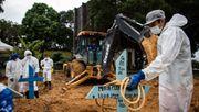 »Brasilien ist ein Open-Air-Laboratorium für das Virus«
