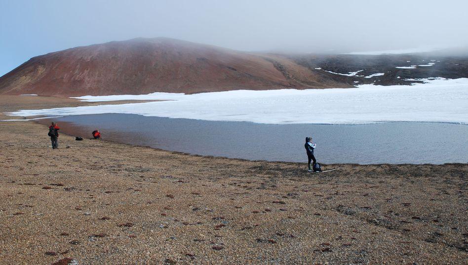 Forscher auf Ellesmere Island: Dieses Bild stammt von einer früheren Expedition in die kanadische Arktis