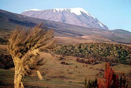 Wahrzeichen mit Schneekuppe: Der 5895 Meter hohe Gipfel