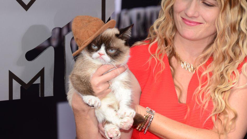 """Grumpy Cat"" im April bei den MTV Movie Awards in Los Angeles"