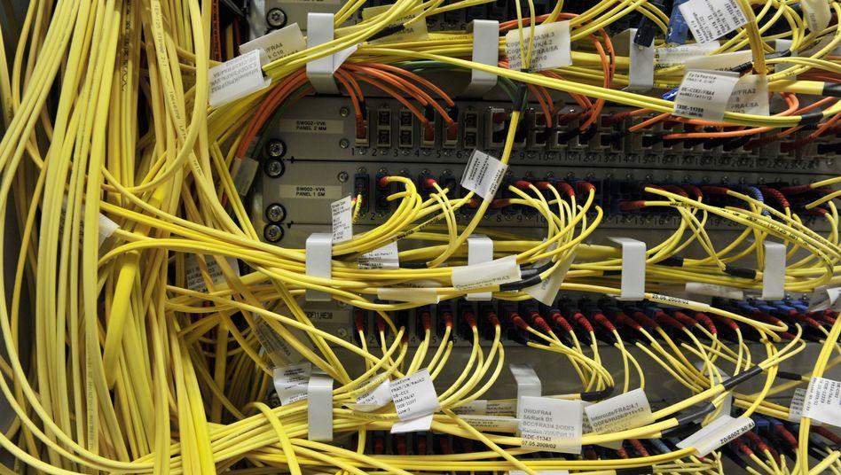Netzwerk-Kabel am De-Cix-Knoten in Frankfurt: BSI und NSA kennen sich