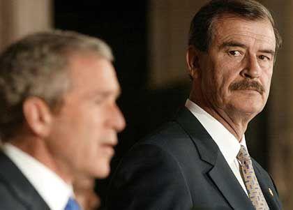 Gefragter Mann: Fox (r.) mit Bush