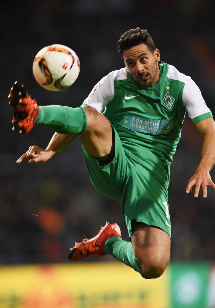 Werder-Altstar Pizarro: Diesmal nichts gegen den HSV