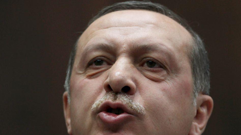 Türkischer Premier Erdogan: Will Schmerzensgeld von Tageszeitung