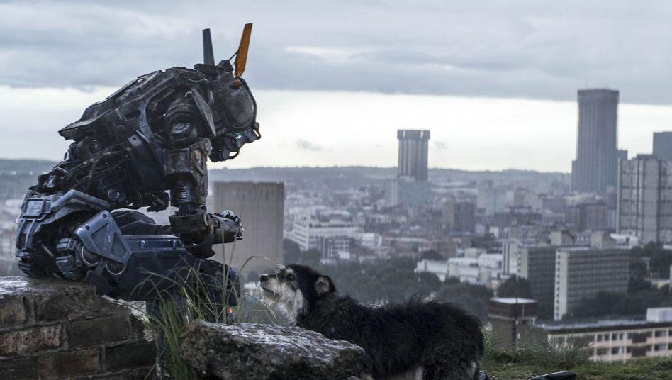"Roboterfilm ""Chappie"": MeinknuddeligesTechno-Känguru"
