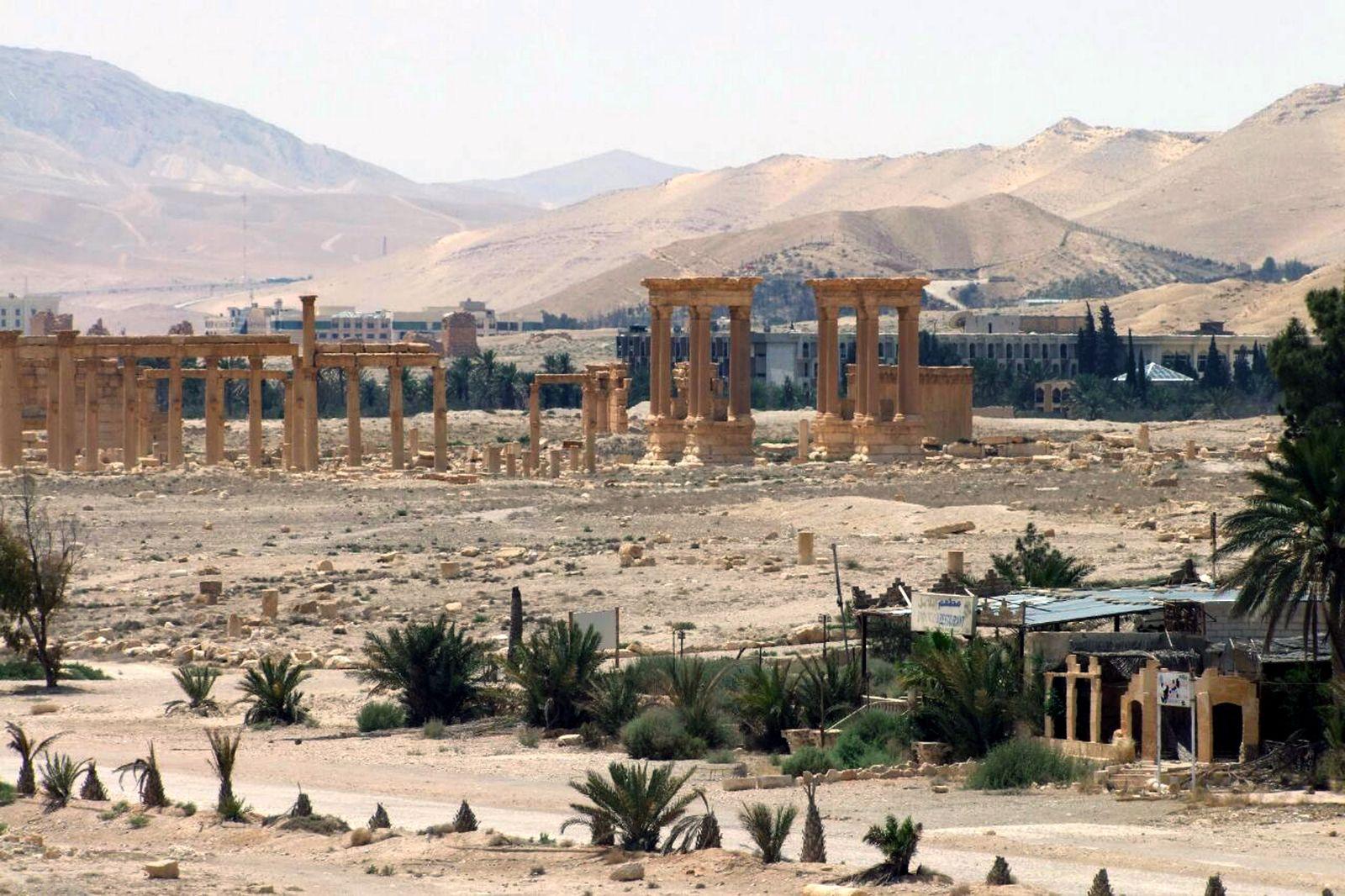 Palmyra/