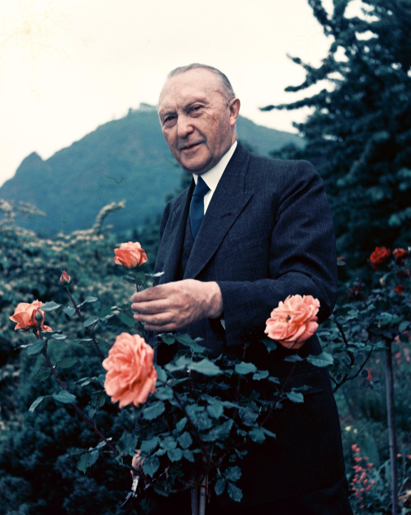 Konrad Adenauer, Bundeskanzler
